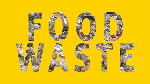 FoodSave copy